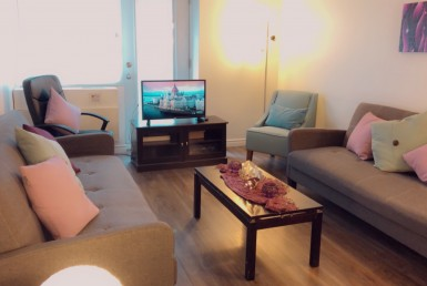 3.5 apartment-Close to Concordia - Free Furniture+ One Month free (Montreal)  alouer.ca